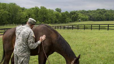 Cover for Project Horse Becomes Newest Program for the Arc of Loudoun
