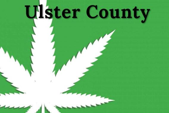 Picture for Ulster County Town Welcomes Potential Marijuana Distributors