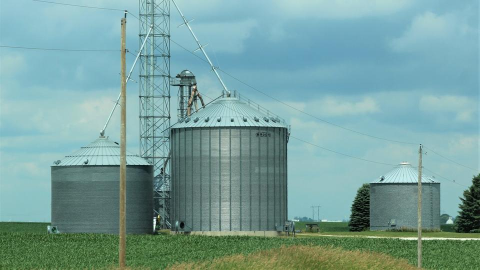 Picture for Economists tell farmers to go slow on carbon trading