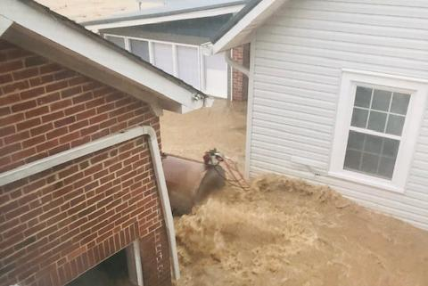 Picture for Humphreys County Sheriff's Dept employee helps rescue man shortly after she was saved herself during flooding