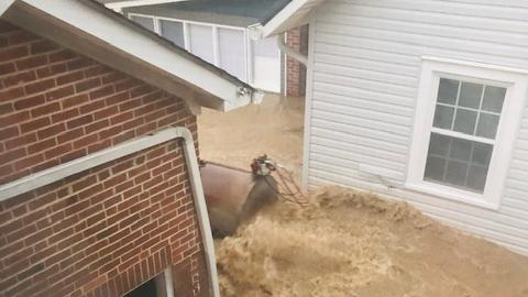 Cover for Humphreys County Sheriff's Dept employee helps rescue man shortly after she was saved herself during flooding