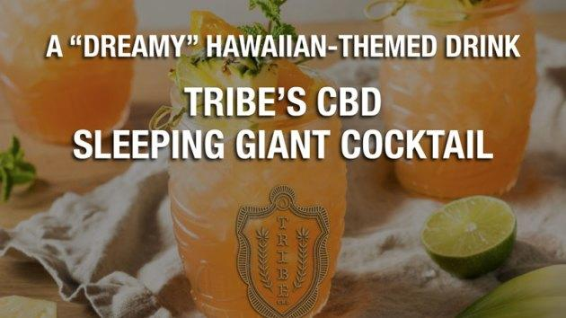 """Picture for Sponsored ContentA """"Dreamy"""" Hawaiian-Themed Drink — Tribe's CBD Sleeping Giant Cocktail"""