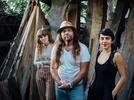 Picture for Did the Texas freeze burst your pipes? Austin musician Thor Harris has a tip