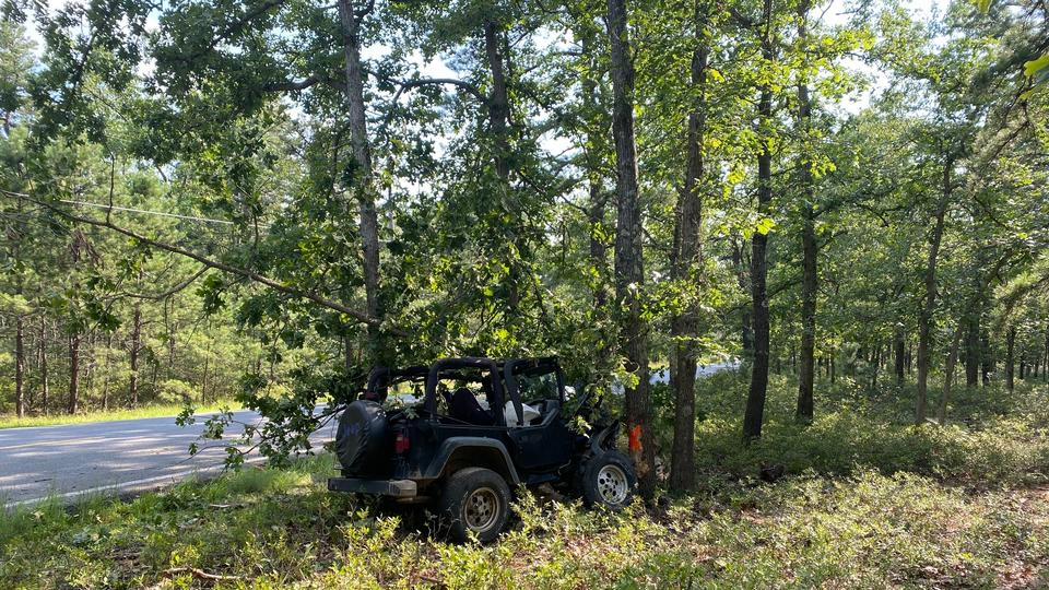 Picture for Jeep Vs. Tree Crash, Man Injured