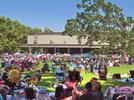Picture for Tanglewood ups capacity but loses Ringo Starr, James Taylor