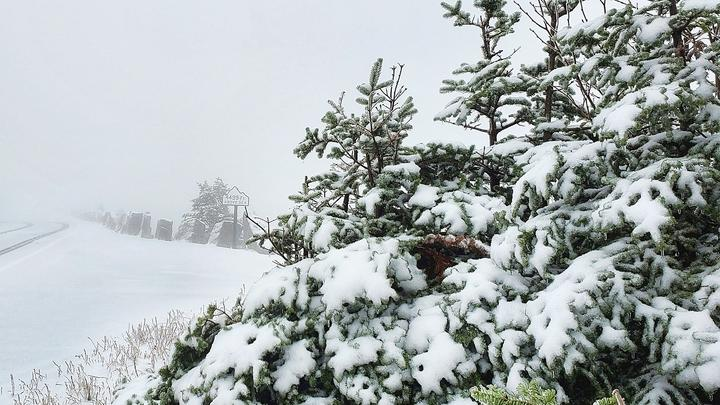 Cover for First Significant Snow of the Season Arrives in Upstate New York