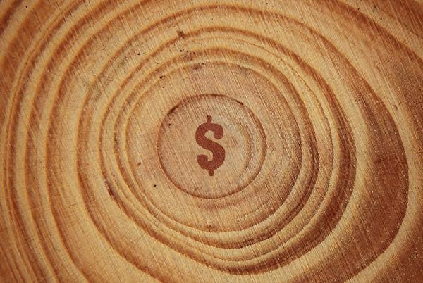 Picture for Scoop: Sequoia Capital just blew up the VC fund model