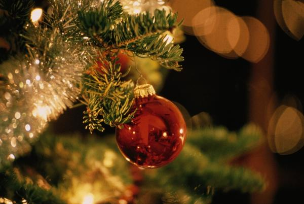 Picture for Rickwood Caverns announces underground Christmas experience