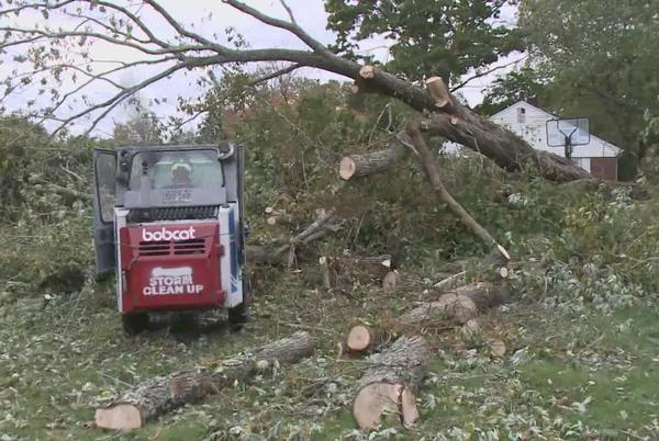 Picture for Nor'easter brings down massive tree in Stonington family's yard