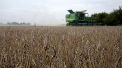 Cover for Scientific breakthrough could boost Illinois crop yields