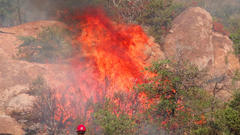 Cover for Telegraph Fire flares up, climbs list of largest wildfires in Arizona history