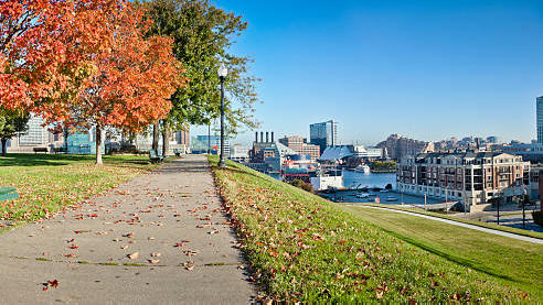 Cover for Fall is here and so is leaf collection season, and more happening today in Baltimore