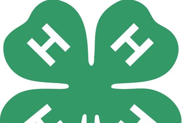 Picture for New 4-H Club To Host Meeting Tomorrow