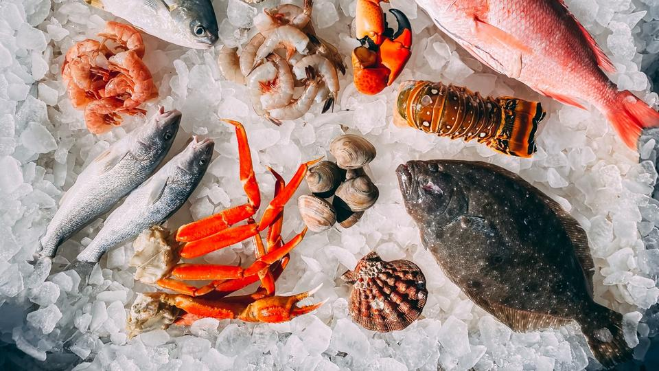 Picture for Where to Find One of the Top Rated Seafood Restaurants in San Francisco