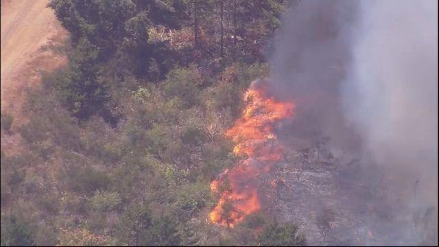 Picture for Pierce County burn ban starts Friday