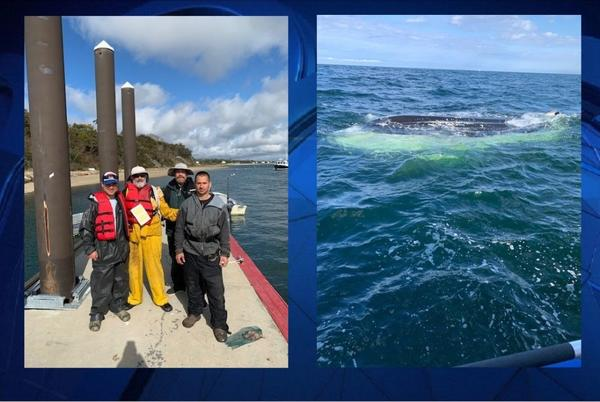 Picture for 4 Men, 2 Dogs Rescued Minutes Before Boat Capsizes Off Cape Cod