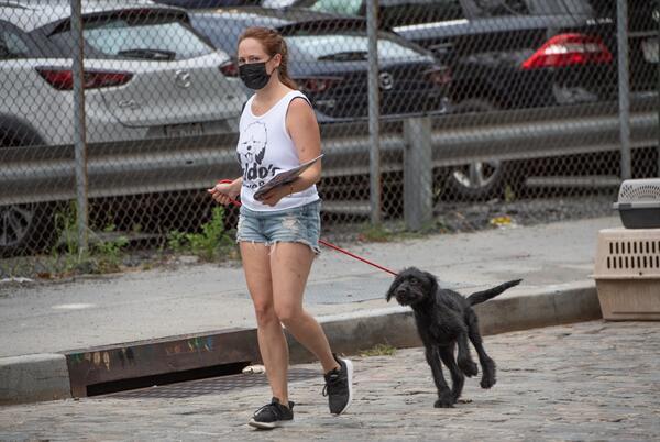 Picture for Waldo's Rescue Pen left dead dogs in dumpsters