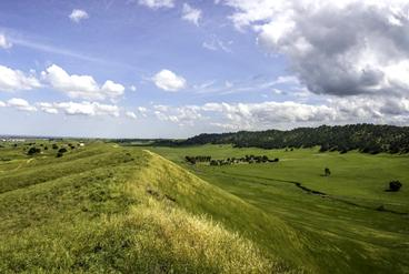 Picture for Roddy Ranch Golf Course: Restoring Habitat and Public Access