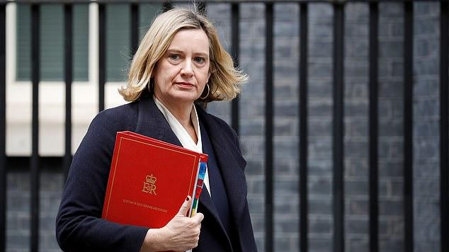 Picture for 'No room for pro-Europeans in Tory party': Would-be MPs need to show show 'real Brexit enthusiasm' to stand a chance of getting selected, says Amber Rudd