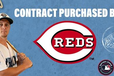 Picture for Braxton Lee Has Contract Purchased By Cincinnati Reds