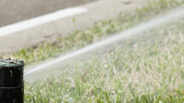 Picture for Water restrictions tightened in southern Utah