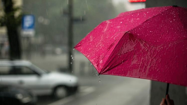 Picture for Rainy Saturday forecast — tackle it with these activities