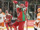 Picture for Cardiff Devils boss Todd Kelman delighted with Elite League resumption plan