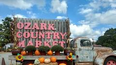 Cover for A Little Shop On Top Of A Mountain, Ozark Country Market Is An Arkansas Must-Visit