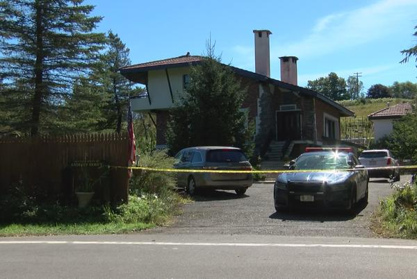 Picture for Herkimer County man arrested for deadly stabbings of dad, 12-year-old sister