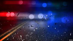 Cover for Names released in fatal crash west of Martin