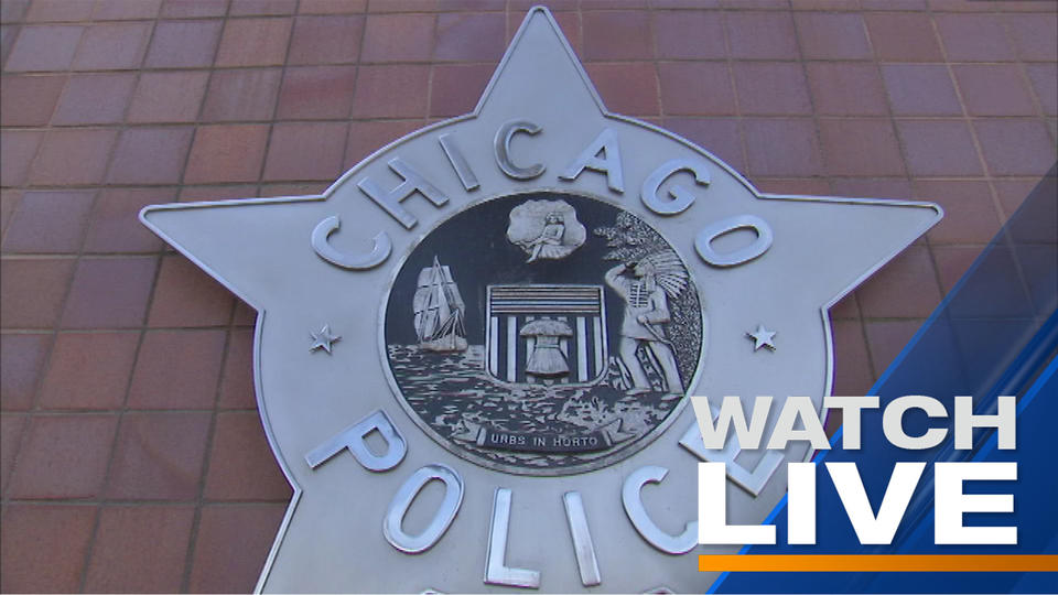 Picture for Chicago Police Supt. David Brown introduces LGBTQ+ liaisons