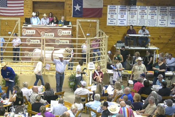 Picture for JUNIOR LIVESTOCK AUCTION, CHILDREN'S DAY FRIDAY AT WASHINGTON CO. FAIR